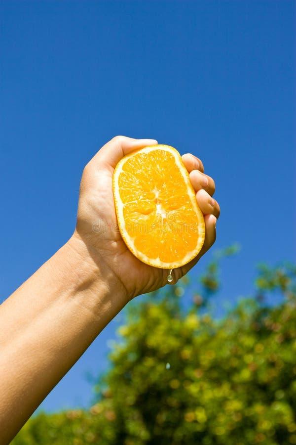 Zumo de naranja fresco foto de archivo