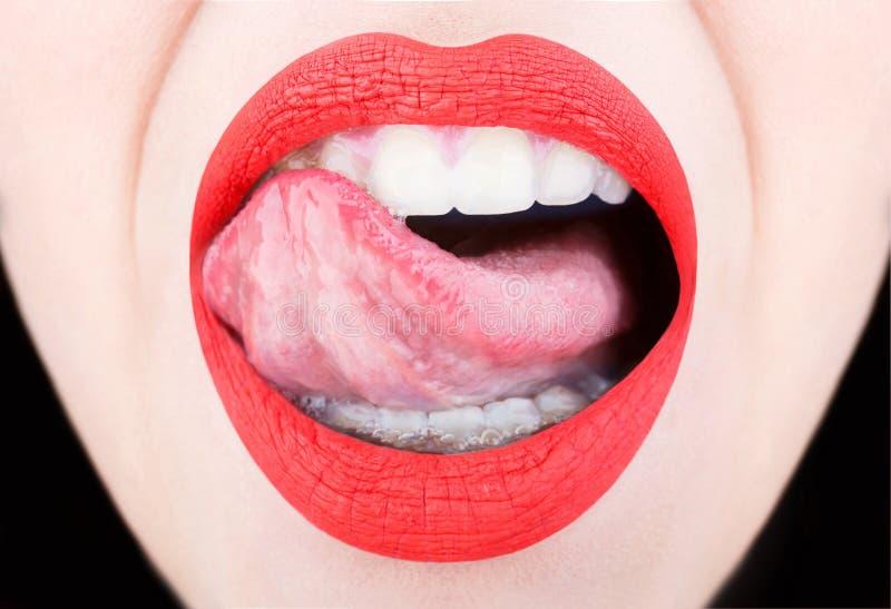 Zunge und sexy Mund Frauenlippe, weibliche Lippen Sexy Lippen, Zunge heraus Schöne sexy Frau, nacktes Mädchen Rote Lippe, Lippens stockbilder