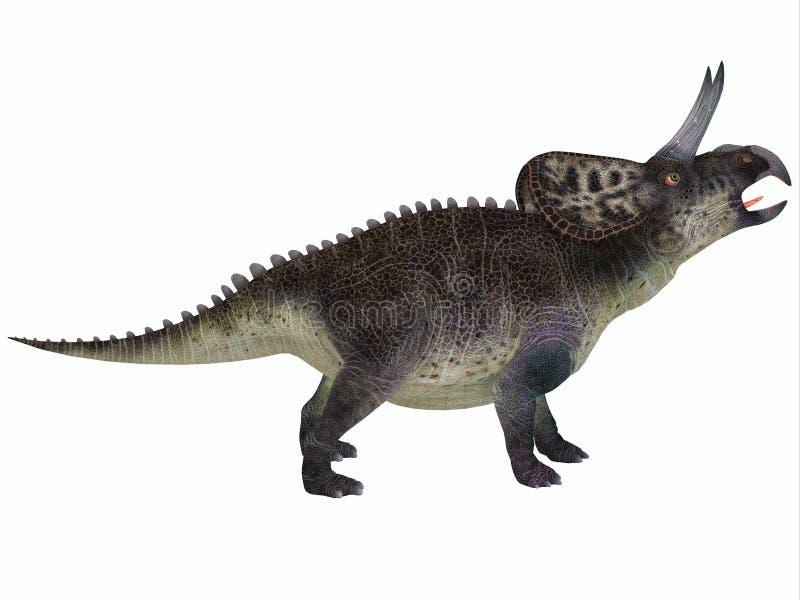 Zuniceratops no branco ilustração do vetor