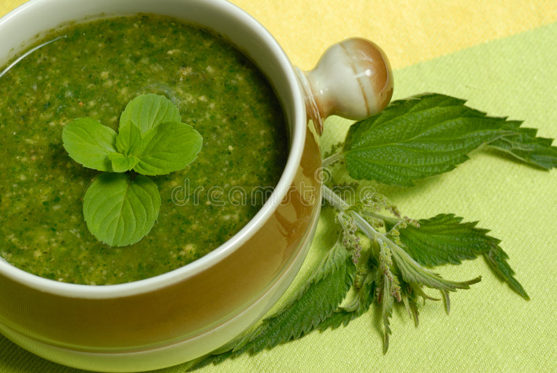 zupa pokrzywowy połączeń zdjęcie stock