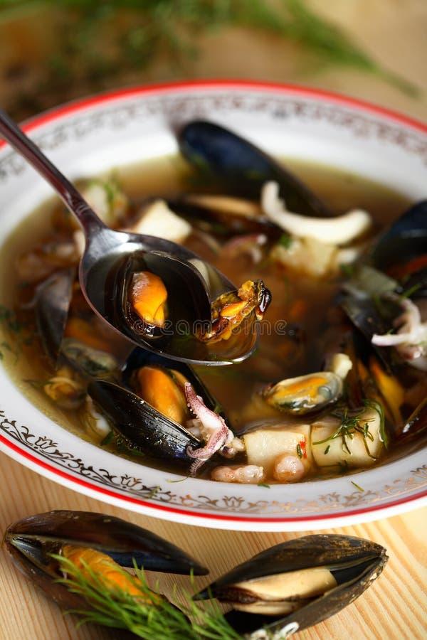 zupa rybna koper zdjęcia stock