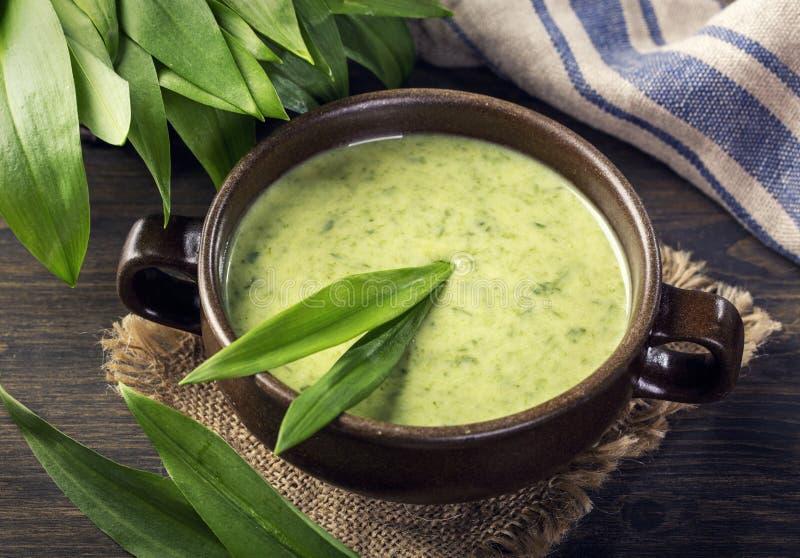 Zupa z kremu Ramsons obrazy royalty free