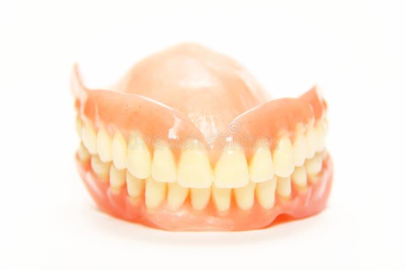 zupełny denture obraz royalty free