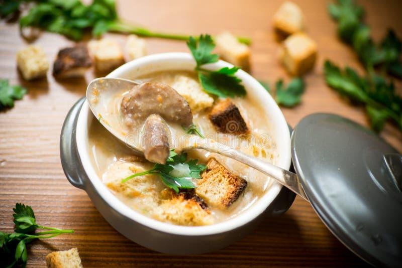 Zupny puree z pieczarkami i croutons w pucharze fotografia stock