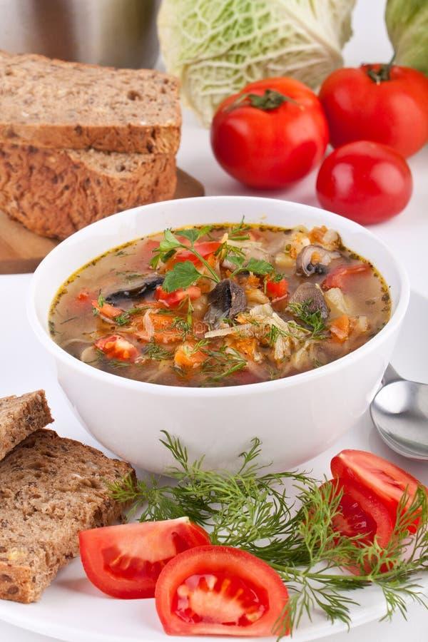 Zuppa di fungo e del cavolo immagine stock