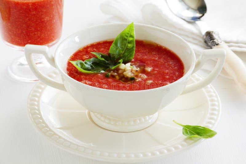 Zuppa di verdure fredda deliziosa immagine stock