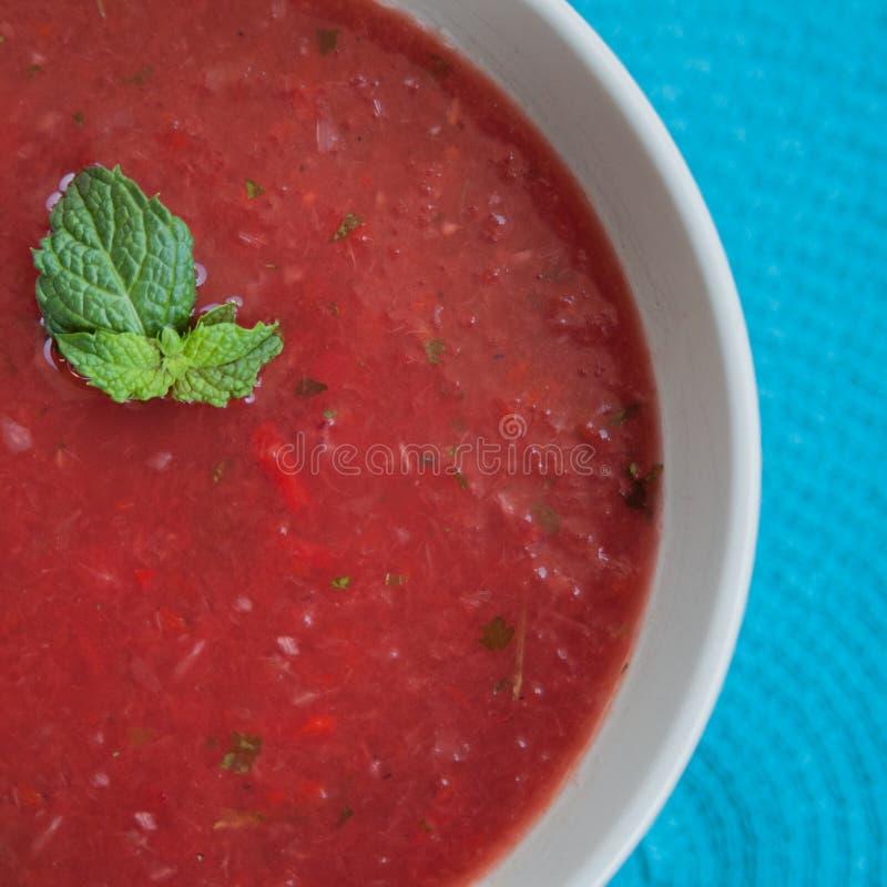 Zuppa di verdure fredda raffreddata dell'anguria immagine stock libera da diritti