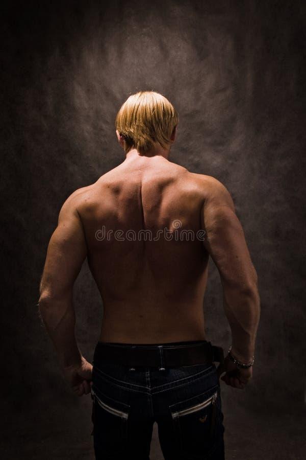Zurück vom männlichen Bodybuilder stockfoto