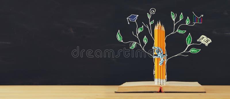 Zurück zu Schule-Konzept Baum der Wissensskizze und -bleistifte über offenem Buch vor Klassenzimmertafel lizenzfreies stockfoto