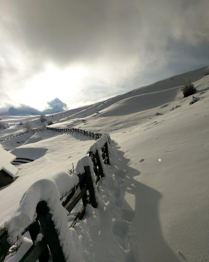 Zurück zu Winter stockfotos