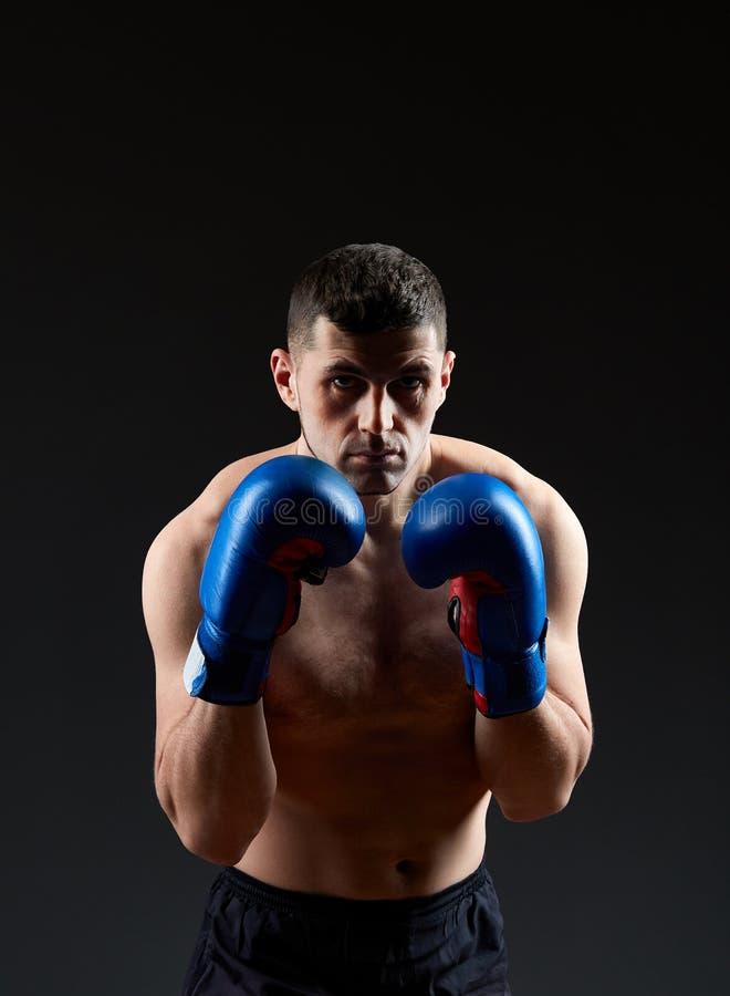 Zurückhaltendes Studioporträt des übenden Boxens des hübschen muskulösen Kämpfers auf Dunkelheit verwischte Hintergrund stockfoto