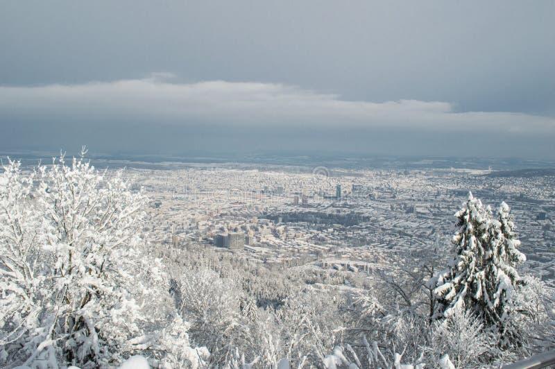 Zurich panorama- vintersikt arkivfoto