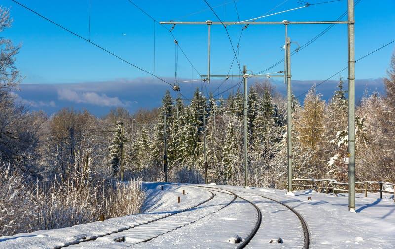 Zurich S-Bahn en la montaña de Uetliberg - Suiza fotografía de archivo libre de regalías