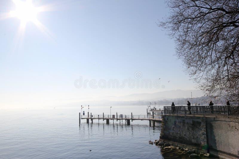 Zurich sjö i vinter, Schweiz royaltyfri foto