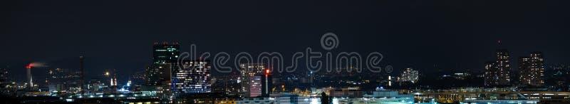 Zurich stadspanorama på natten fotografering för bildbyråer