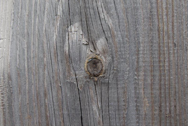 Zusammenfassung der alten Klotzholzbeschaffenheit, hölzerner Stumpf des Klotzes als Hintergrund oder Tapete, hölzernes Stumpfmust stockfoto