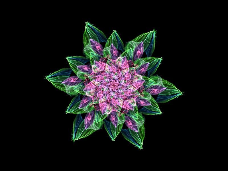 Zusammenfassungsflammenrosa-Mandalablume mit grünen Blättern, dekoratives rundes mit Blumenmuster auf schwarzem Hintergrund Yogat stock abbildung