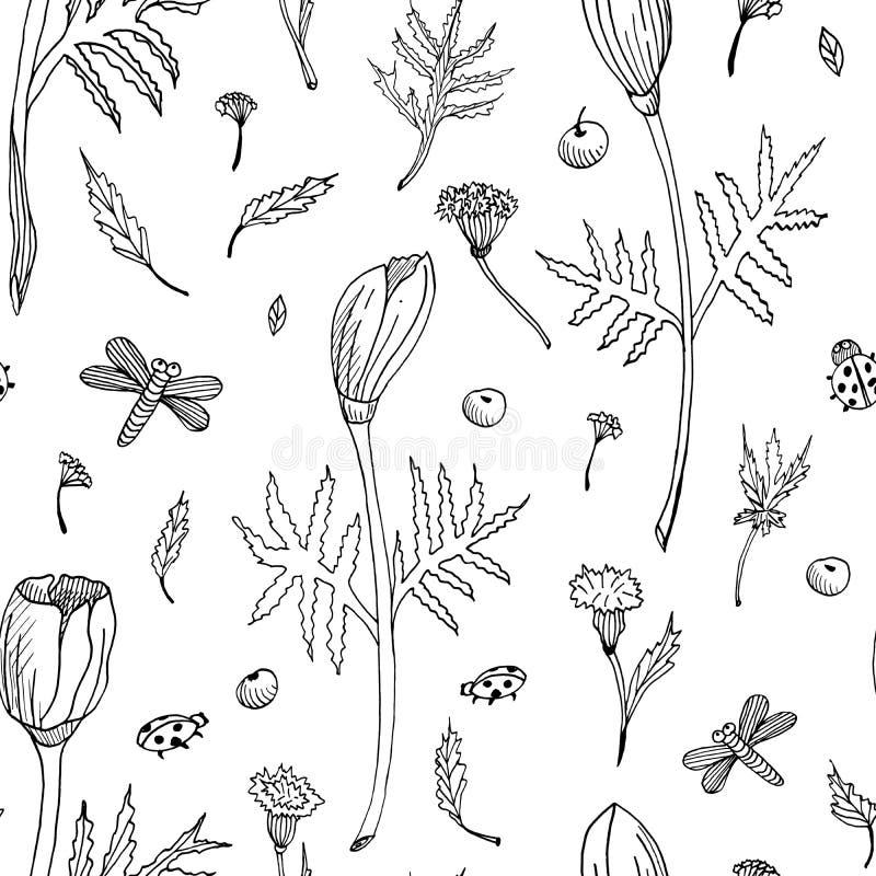 Zusammenfassungsnahtloses Blumenmuster mit Tulpen, Blättern und Kräutern Hand gezeichnete Schwarzweiss-Blumen Entwurfsmonochrom vektor abbildung