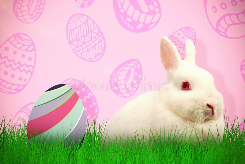 Zusammengesetztes Bild des Abschlusses herauf Porträt des netten Kaninchens vektor abbildung