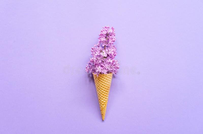 Zusammensetzung der Eistüte mit purpurroten lila Blumen auf einem violetten Hintergrund stockfotografie