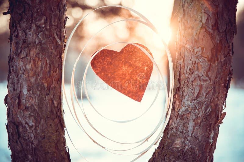 Zusammensetzung mit einem roten Herzen zwischen Bäumen stockfoto