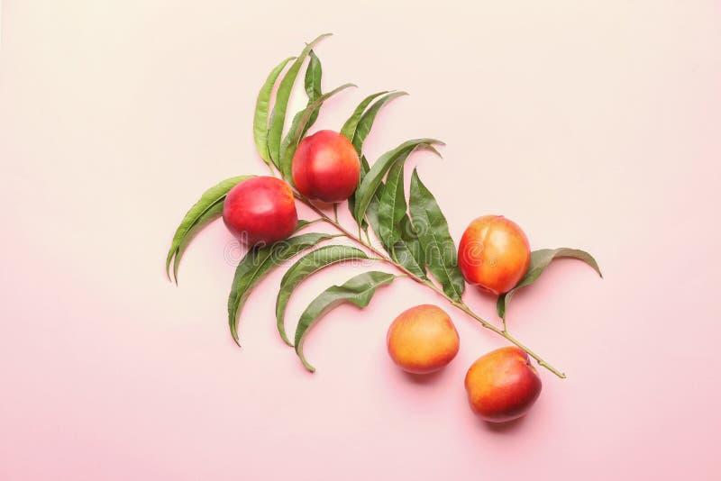 Zusammensetzung mit reifen Pfirsichen auf Farbhintergrund, Draufsicht stockbilder