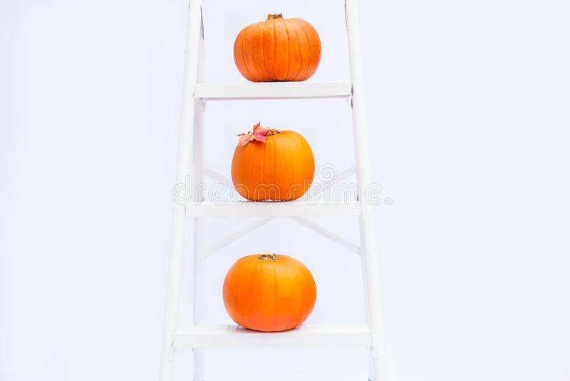 Zusammensetzung von drei Kürbisen mit Ahornblatt auf Treppe auf den Schritten der croped Sprossenleiter auf dem weißen Hintergrun lizenzfreie stockfotografie