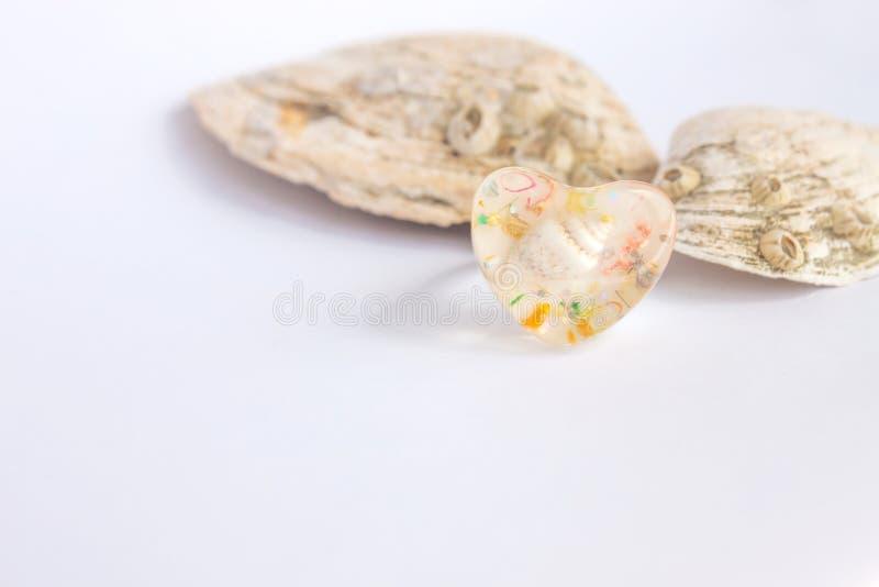 Zusammensetzung von exotischen Seeoberteilen und von heartshaped Ring auf einem wei?en Hintergrund, Kopienraum lizenzfreie stockbilder