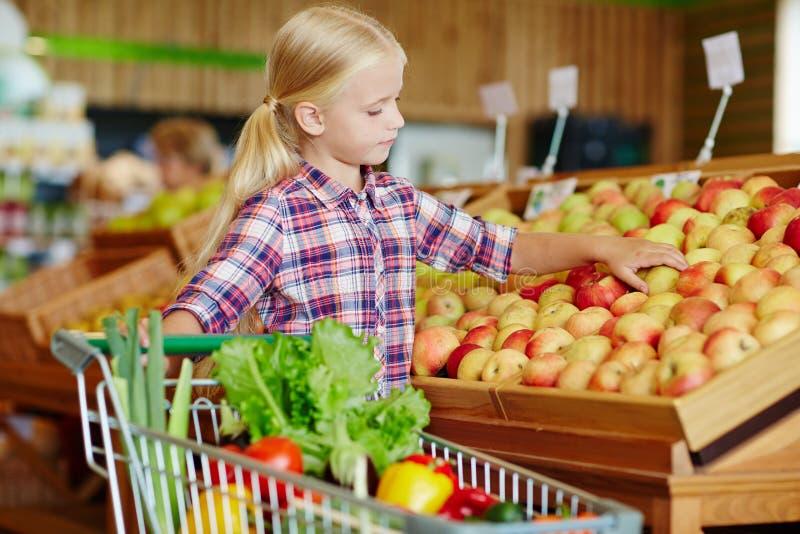 Zusammenstellung der Äpfel lizenzfreie stockbilder