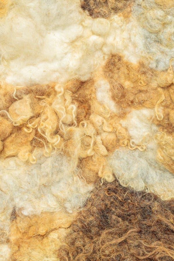 Zusammenstellung der Schafwolle stockfotografie