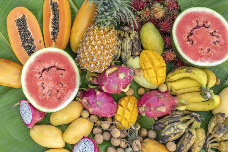 Zusammenstellung der tropischen Früchte auf Blättern einer grünen Banane Leckerer Nachtisch, Abschluss oben Mango, Papaya, Banane lizenzfreie stockfotos