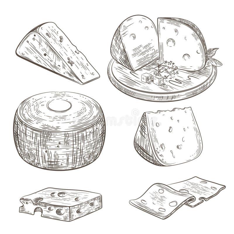 Zusammenstellung verschiedener Käsebilder Käsestücke Käse liegt auf einem Holzbrett vektor abbildung