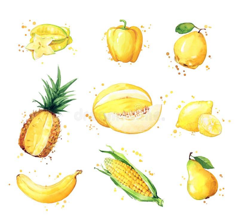 Zusammenstellung von gelben Nahrungsmitteln, von Aquarellfrucht und von vegtables stock abbildung