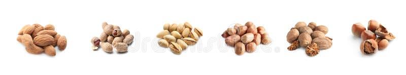 Zusammenstellung von geschmackvollen Nüssen auf weißem Hintergrund lizenzfreies stockfoto