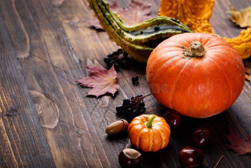 Zusammenstellung von Kürbisen mit Herbstlaub auf einem hölzernen Hintergrund Kopienraum lizenzfreie stockfotos