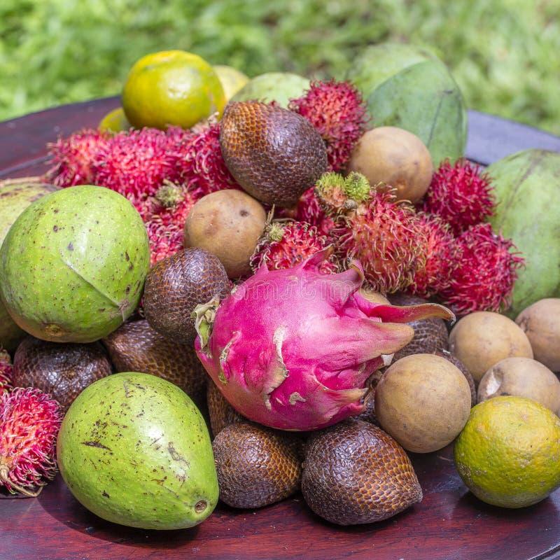 Zusammenstellung von tropischen Früchten - grüne Mango, Avocado, Rambutan, Drachefrucht, salak, Sapotillbaum und Orange in der In stockbild