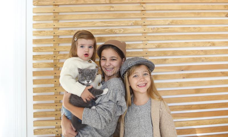 Zusters van manier de leuke meisjes met een Brits katje in de wapens stock afbeelding