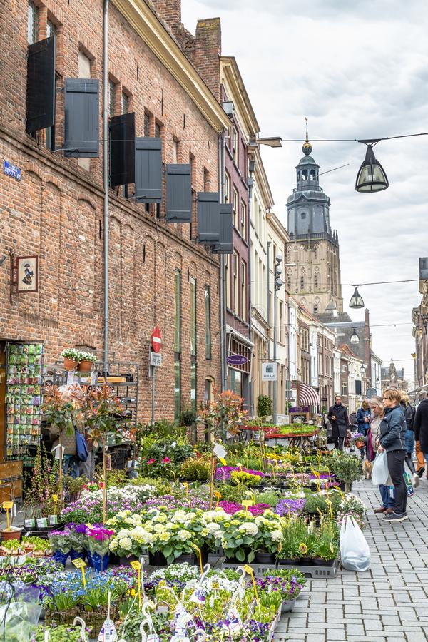 City center of Zutphen in the Netherlands. Zutphen, the Netherlands - March 28, 2019: Flower market in the medieval city center of Zutphen in the Netherlands stock images