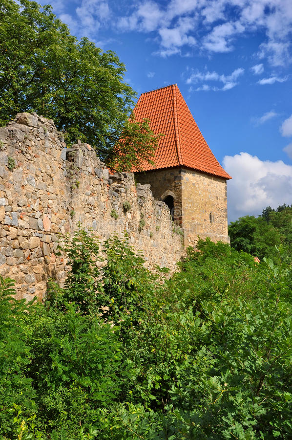 Download Zvikov wall stock photo. Image of blue, mysterious, medieval - 25631258