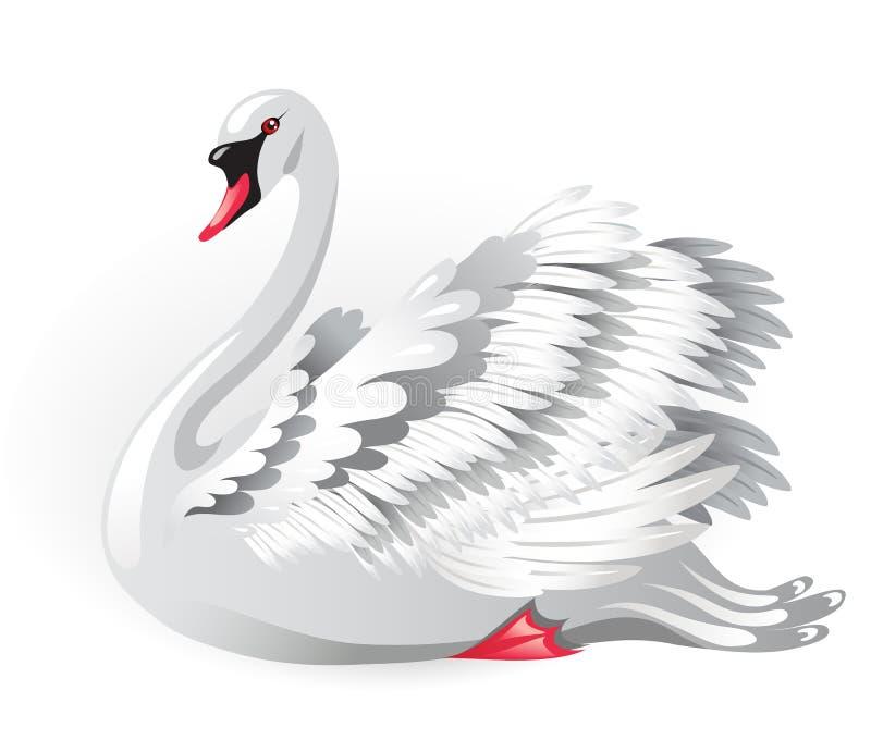 Zwaan vector illustratie