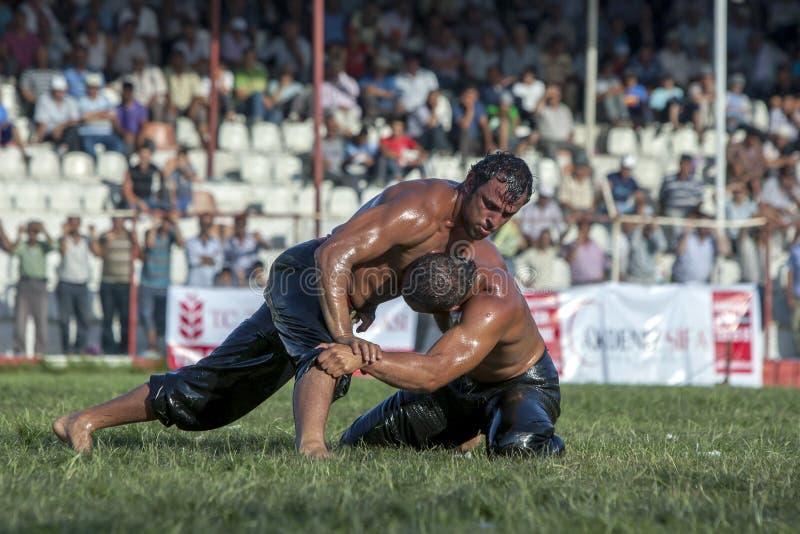 Zwaargewicht worstelaars die bij het de Olie van Elmali Turkse het Worstelen Festival in Elmali, Turkije concurreren royalty-vrije stock foto