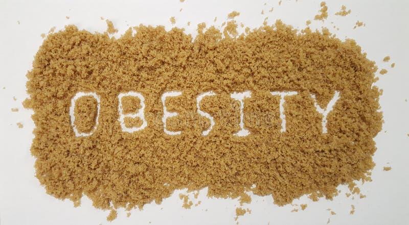 Zwaarlijvigheid in Bruine Suiker op Witte Achtergrond nauwkeurig die wordt beschreven die stock fotografie