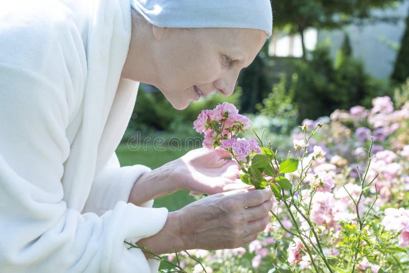 Zwakke zieke hogere vrouwen ruikende bloemen tijdens oncologiebehandeling in de tuin royalty-vrije stock afbeeldingen