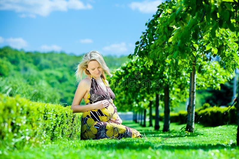 Zwanger wijfje in park stock foto's