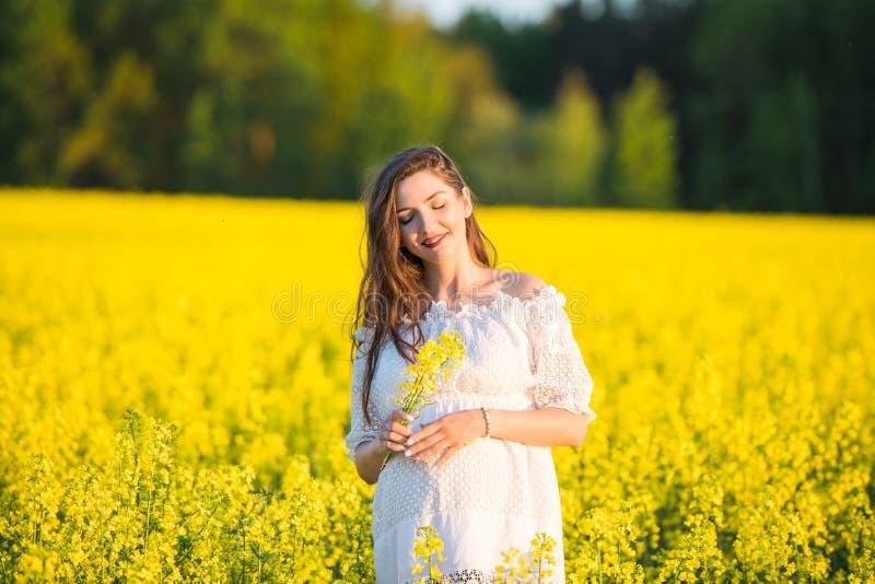 Zwangere gelukkige vrouw wat betreft haar buik Zwanger moederportret die op middelbare leeftijd haar buik strelen en close-up gli stock afbeeldingen