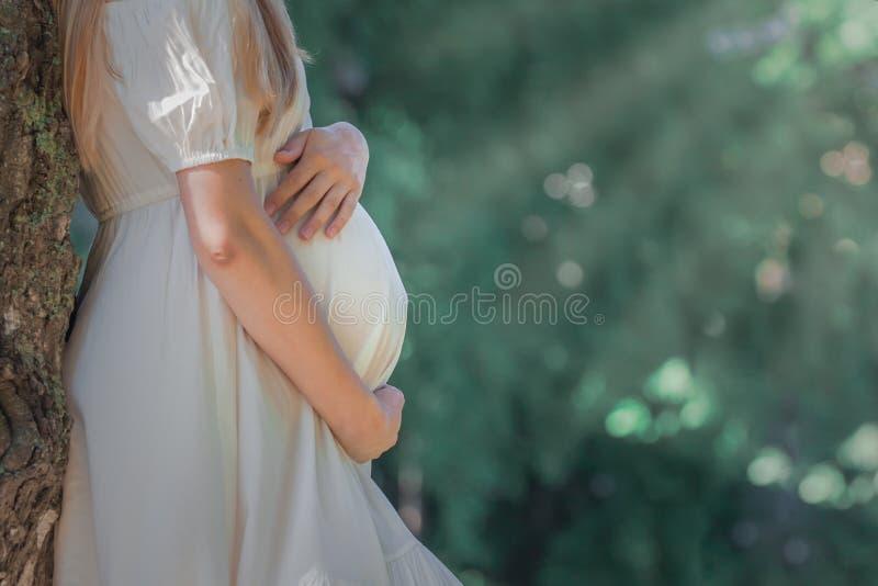 Zwangere vrouw die haar buik koesteren stock fotografie