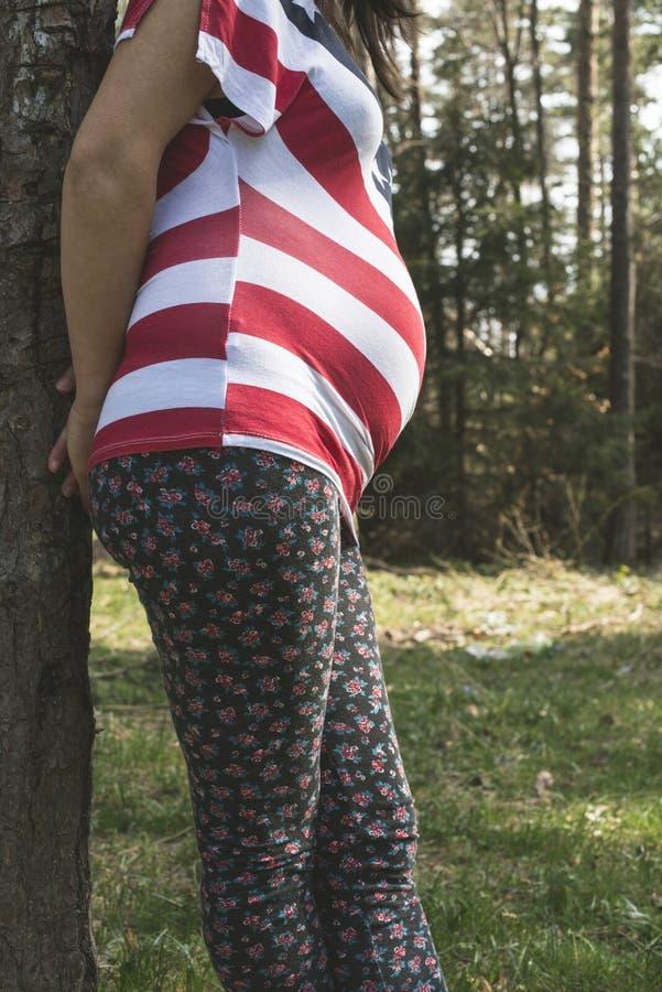 Zwangere vrouw in het bos stock foto