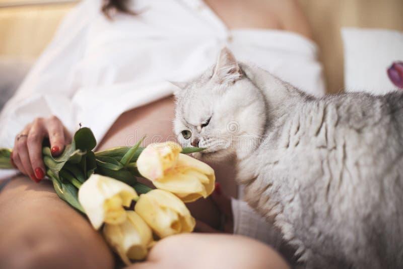 Zwangere vrouw met een kat de kat ruikt de bloemen stock fotografie