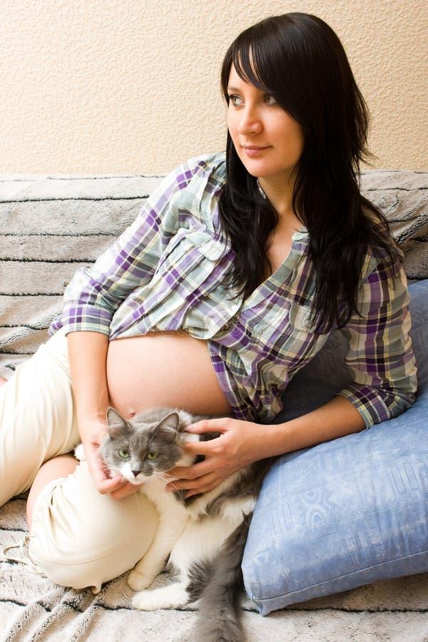 Zwangere vrouw met kat stock fotografie