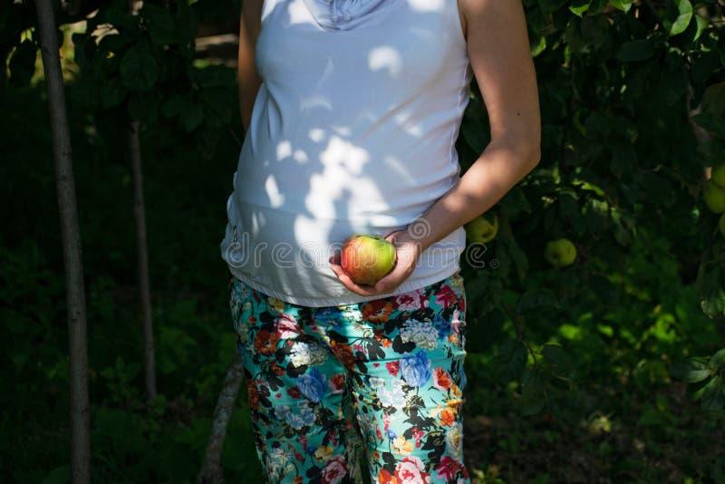 Zwangere vrouw met verse appelen Zwangerschap, gezondheidszorg, voedsel en gelukconcept Gezonde Zwangerschap royalty-vrije stock foto's